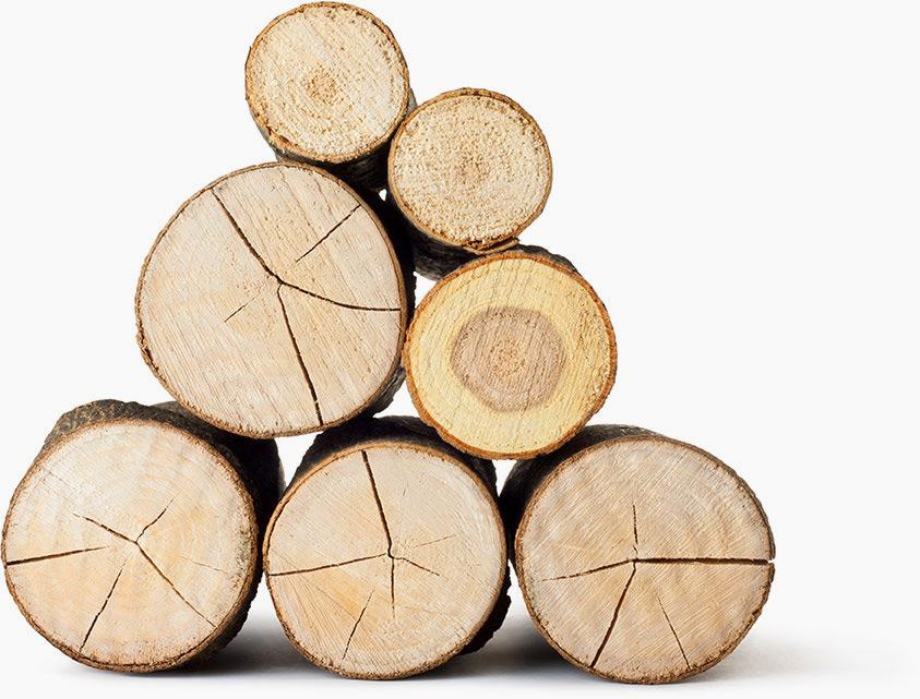 rigamonti-arredi-ceppi-legno